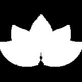 1MM WEBSITE 5P'S SPIRITUAL 2 .png