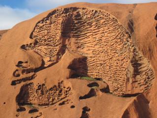 Picnic at Ayers Rock