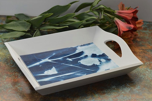 DIY Cyanotype Tray & Printing Kit