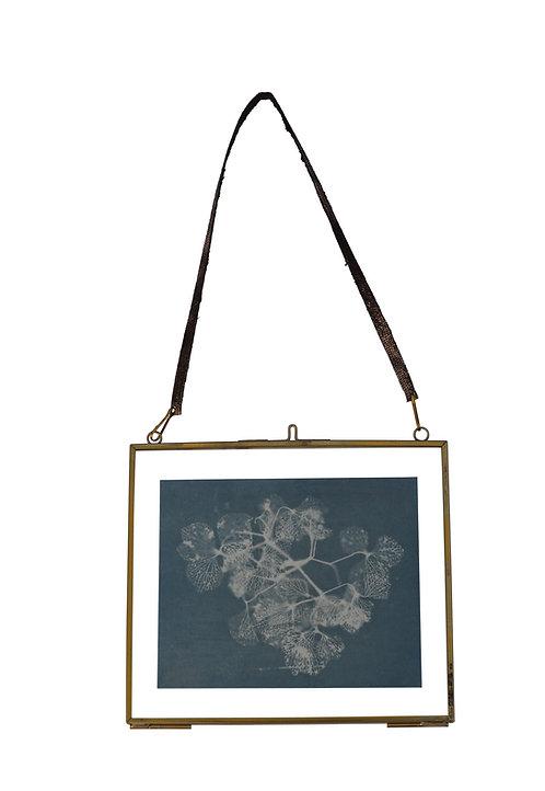 Framed Cyanotype Print