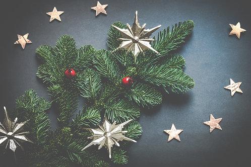 DIY Christmas Wreath Kit