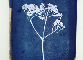 Would you like to learn how to make cyanotype prints?