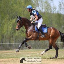 Boulerie Jump - Pôle Européen du Cheval : Concours pour les jeunes chevaux.