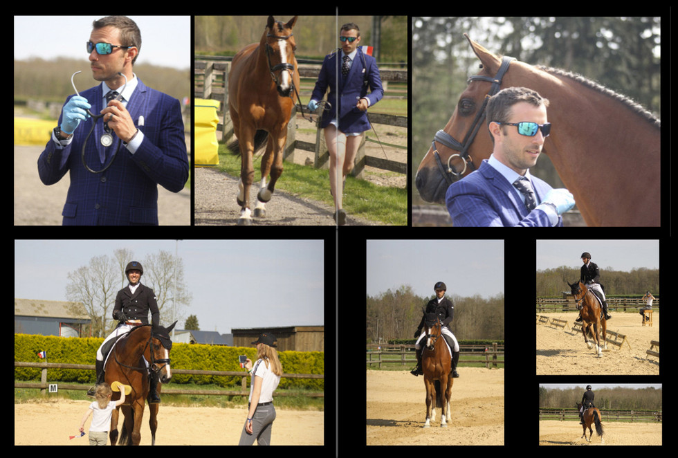 The NAF Virtual 5* Eventing Competition