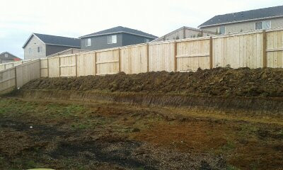 Before Retaining Wall