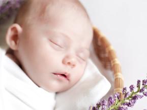 Madeleine's Newborn Portrait Session - Los Angeles