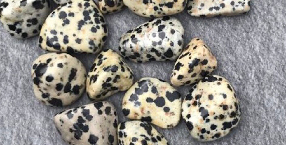 Dalmatian Jasper Tumblestone