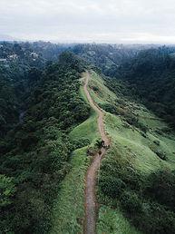 Walking trail wilderness
