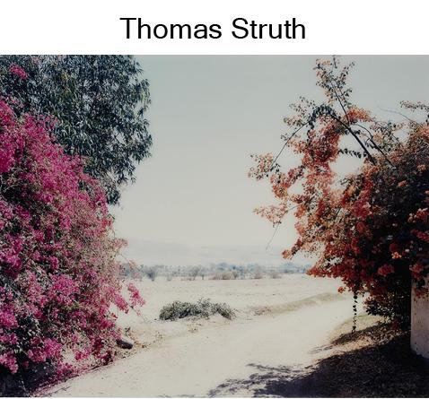 Struth 2