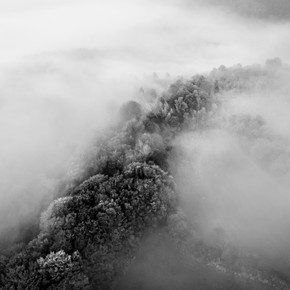 Photos favorites - Noir et blanc-2.jpg