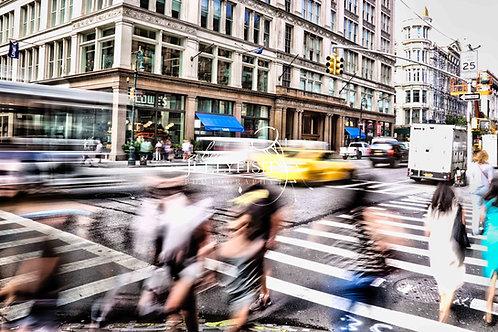 New York City Moves