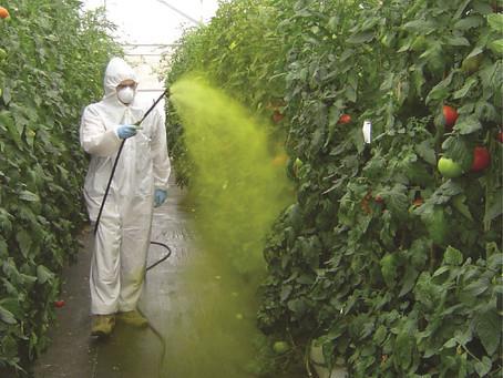 Les pesticides, une cause de cancers et de maladies graves confirmée