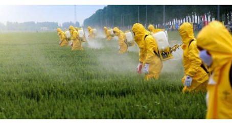 Quels sont les départements de la région Occitanie qui consomment le plus de pesticides ?