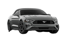 Mustang_edited.png