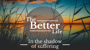 The better life - W4 - In the shadow of