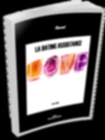 Couverture livre blanc Dating Assistance