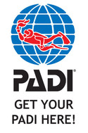 Get-Your-PADI-Here-Portrait(Preview).jpg