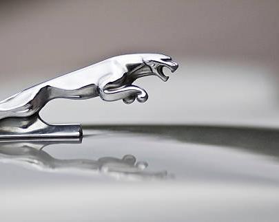 einfach Jaguar!