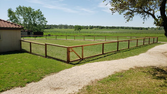 bull wire fence in central texas.jpg