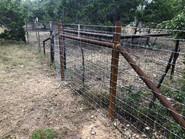 custom bull wire fence