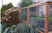 decorative bull wire fence design austin