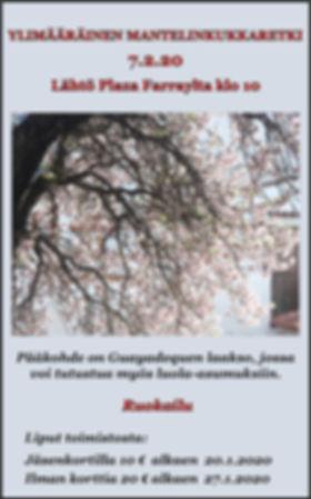 Toinen mantelinkukkaretki 7.2.2020.jpg