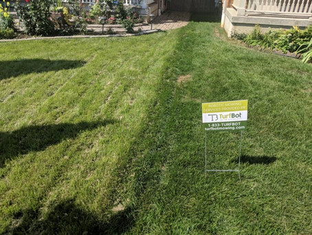 TurfBot's Mowing Height Helps Enhance the Health of Your Lawn