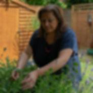 Close up herbs.jpg