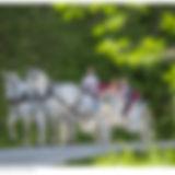 horse-drawn-carriage-wedding-venue-flori
