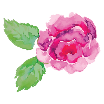 Bloom Weddings & Events