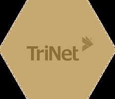 hexagons-trinet.png