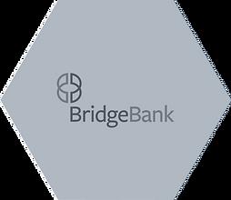 hexagons-bridgebank.png