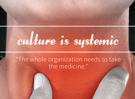 Culture Is Systemic: Three True Stories