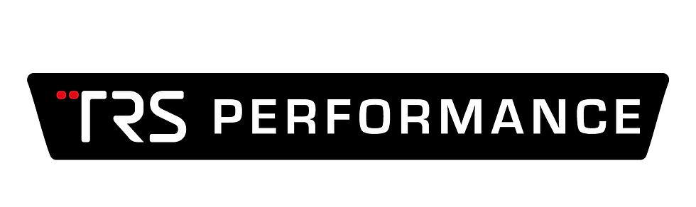TRS Performance Fiesta Mk8 Airbag Light Cover Gel Badge