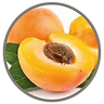 fruit_flame_lily_apricot.png