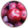 fruit_red_plum.png