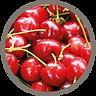 fruit_sour cherries.png