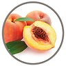 fruit_flame_lily_peach.png