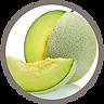 fruit_melon.png