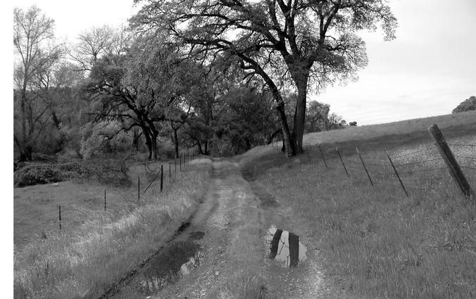 Amador Path