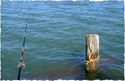 Fishing Pole and Piling