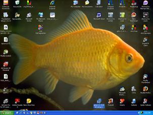 My Screen