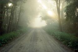 East Bound Moring Fog