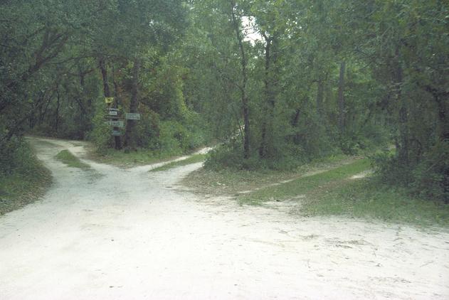 3 Driveways