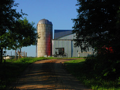 Freds Barn and Buggy