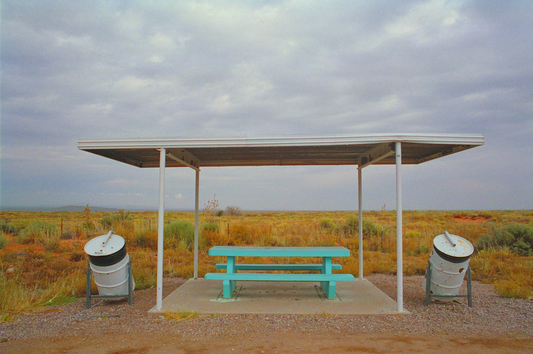 Rest Area Picnic Table #2