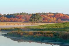 Fall Creek Pond