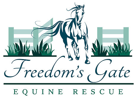 WE NEED HELP RIGHT NOW!!! Horses are set to be picked up at anytime and transported to slaughter!! Please donate if possible!!