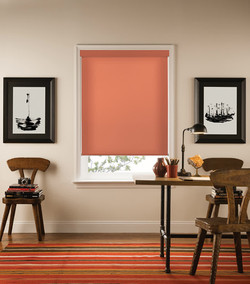 RS-ColorLux-142-Coral-Passion-Roller