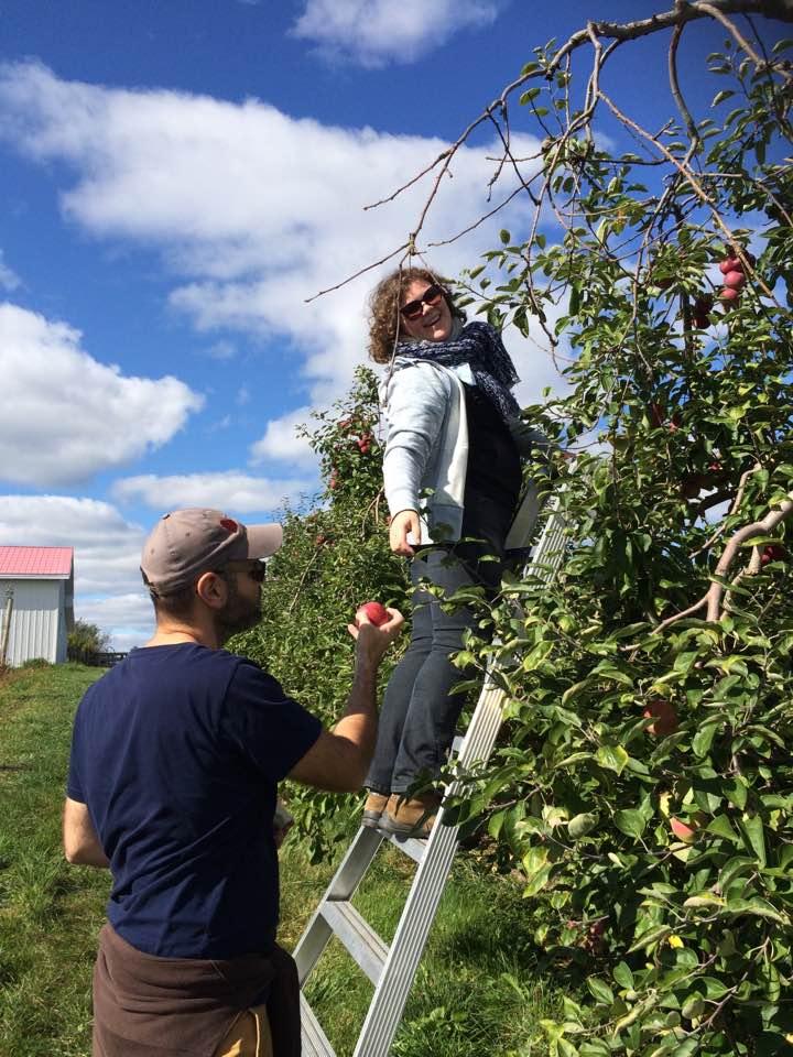 Activité pommes l'Ile d'Orléans 2018